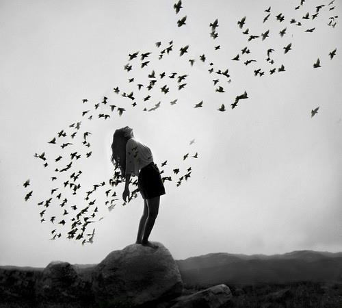 идеале, сонник черный ворон зплетнли вылетел излишняя